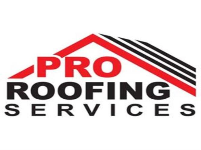 Pro Roofing Services of Florida Inc