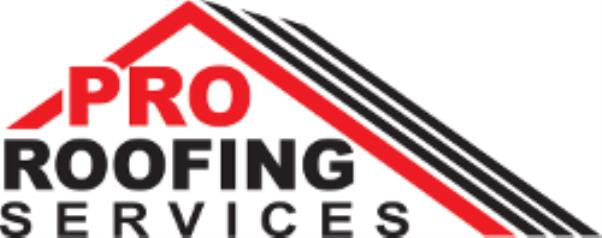 Pro Roofing Services