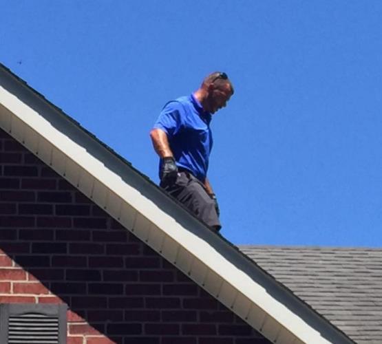 Bluebird Roofing LLC