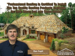 Professional Roofing and Exteriors
